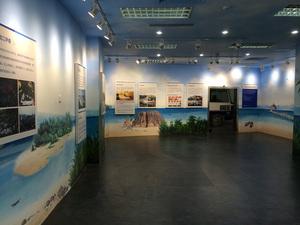 校园文化墙+风景